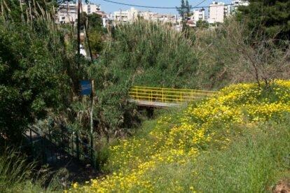 Rema Pikrodafnis Athens