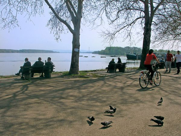 Zemun Quay Belgrade