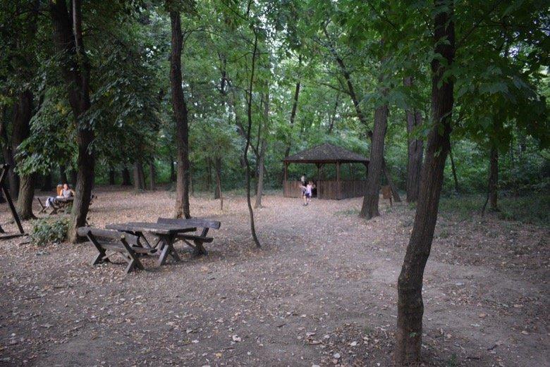 Byford's Forest Belgrade