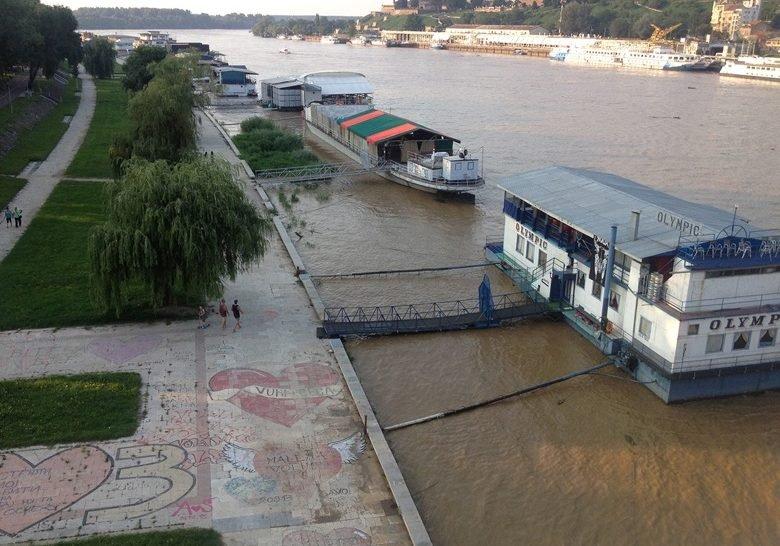 Under the Branko's Bridge Belgrade