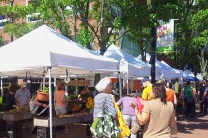 Charles Sq. Farmers Market – Beautiful local foods!