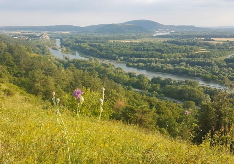 Devínska Kobyla Bratislava