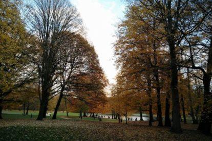 Bois de La Cambre – Preferred spot for a sunny day