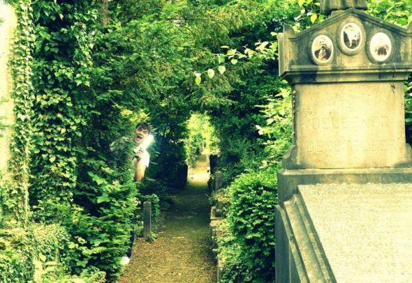 Cemetery of Dieweg Brussels