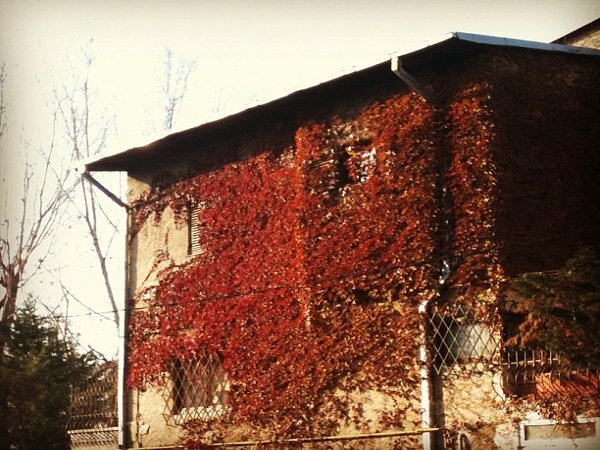 Cotroceni Neighborhood Bucharest