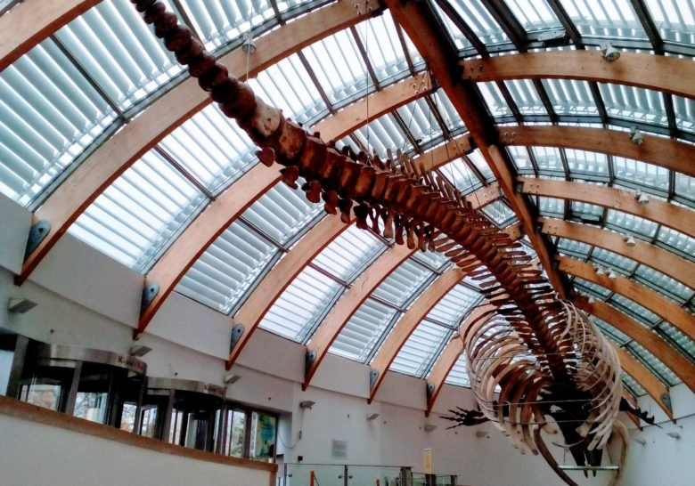Natural History Museum Budapest