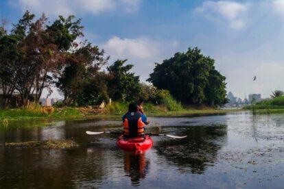Kayaking with Birds Cairo