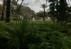 Merryland Park Cairo