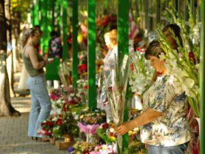 Chisinau Flower Market Chisinau