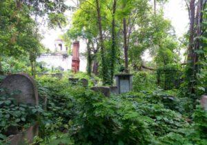Jewish Cemetery – A nice spot