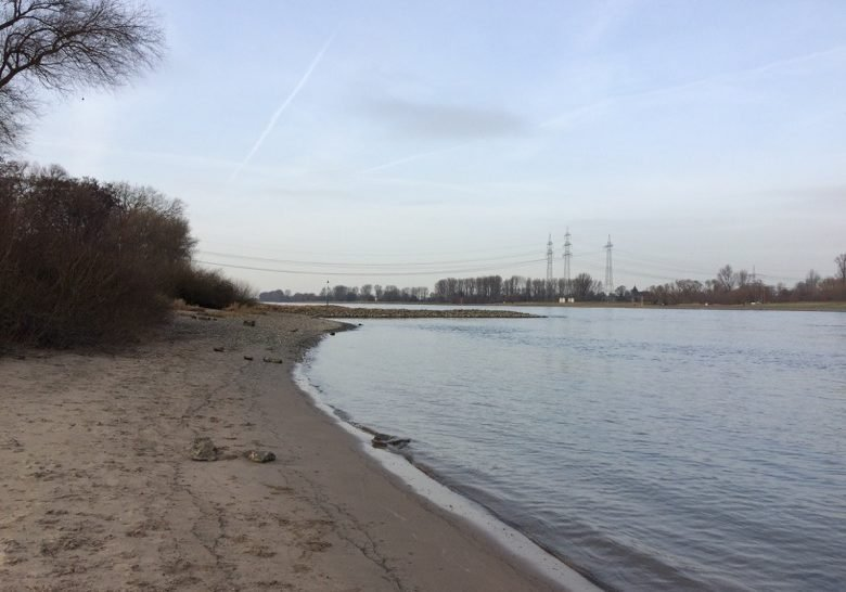 Rheinaue Merkenich Cologne
