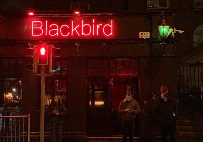 Blackbird  Dublin