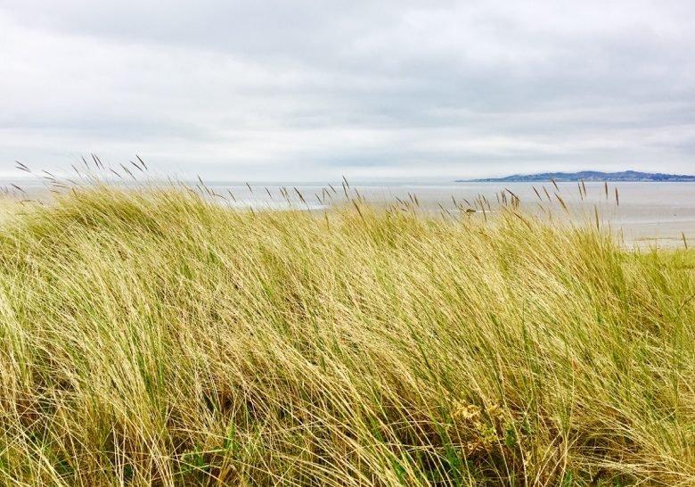 Shelley Banks Beach Dublin