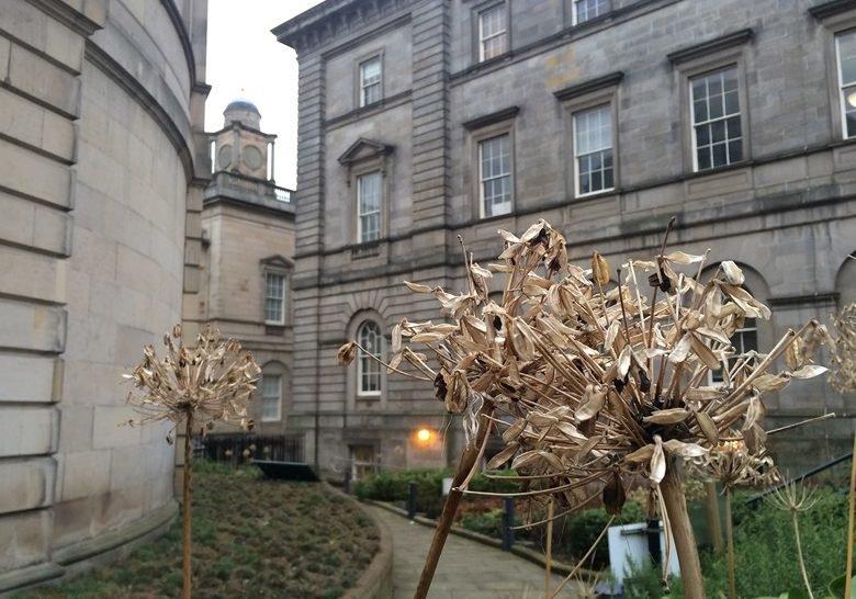 The Archivists' Garden Edinburgh