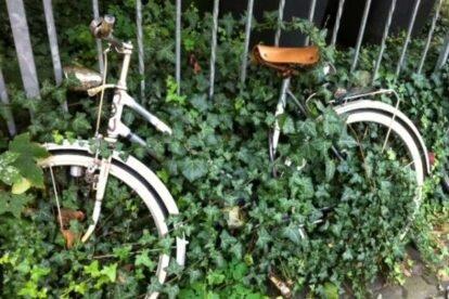 Nordend – A stroll through my neighbourhood