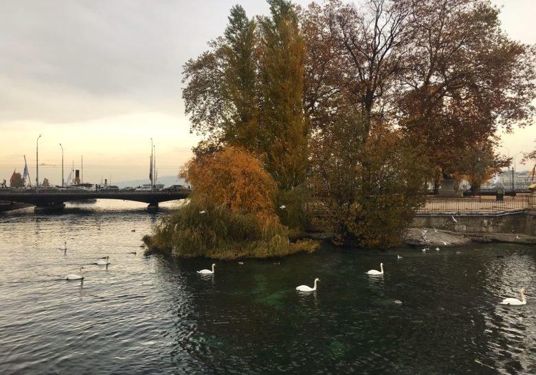 Pont des Bergues Geneva