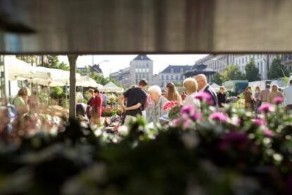 Sunday Flower Market Ghent