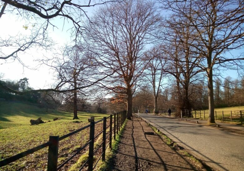Pollok Park Glasgow