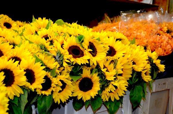 Blumenladen – Beautiful flowers on a low budget