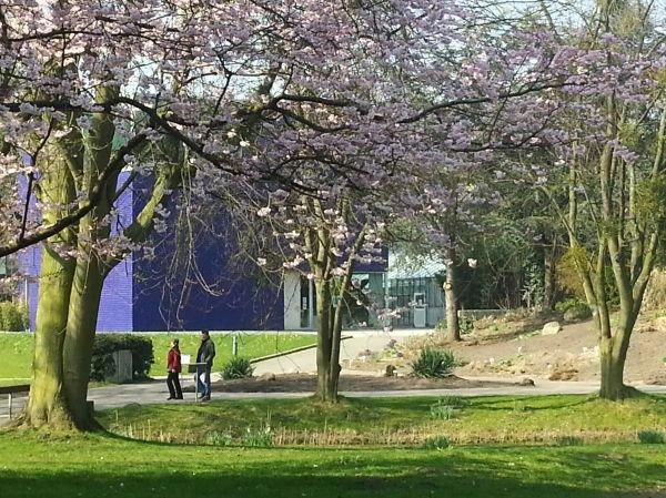 Botanical Garden Hamburg