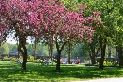Hayns Park Hamburg