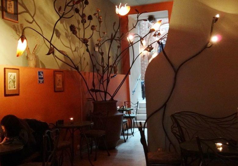 Cafe Botanica Krakow