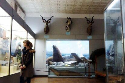 Museum of Natural History Kyiv