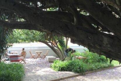 Goethe Garden Lisbon