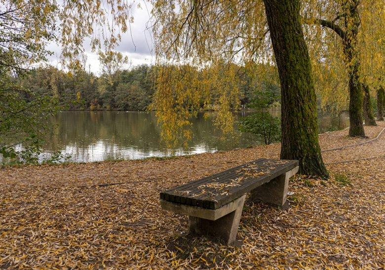 Koseski Bajer Pond Ljubljana