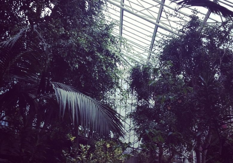 Barbican Conservatory London