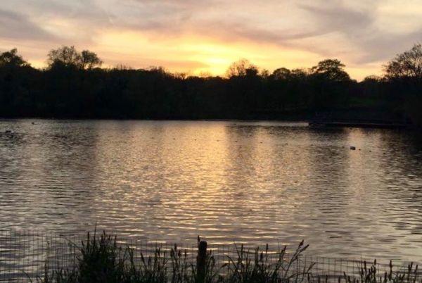 Hampstead Ponds London