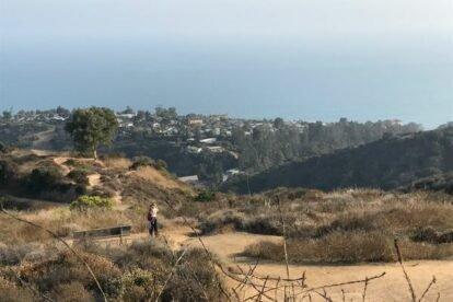 Los Liones Canyon Trail Los Angeles