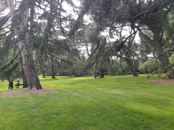 Capricho Park Madrid