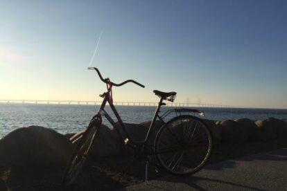 Biking in Malmö Malmo
