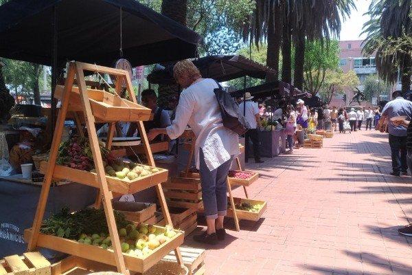 Mercado el 100 Mexico City
