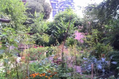 Isola Pepe Verde Milan