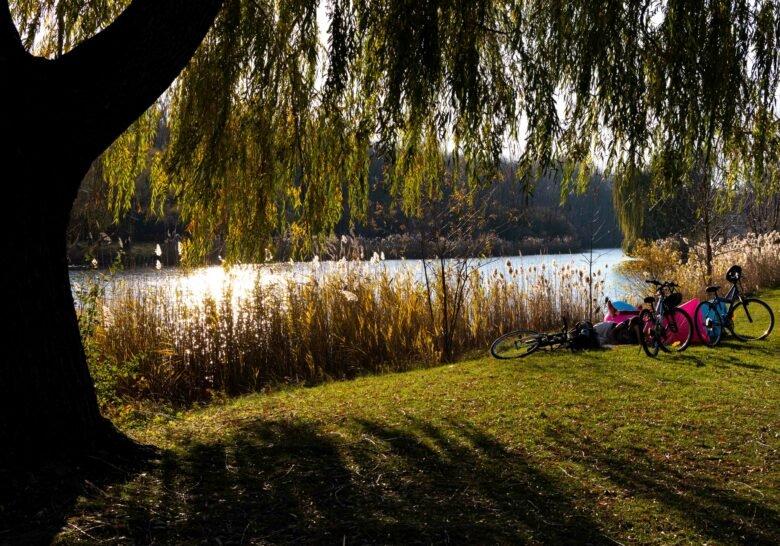 Parc Angrignon Montreal