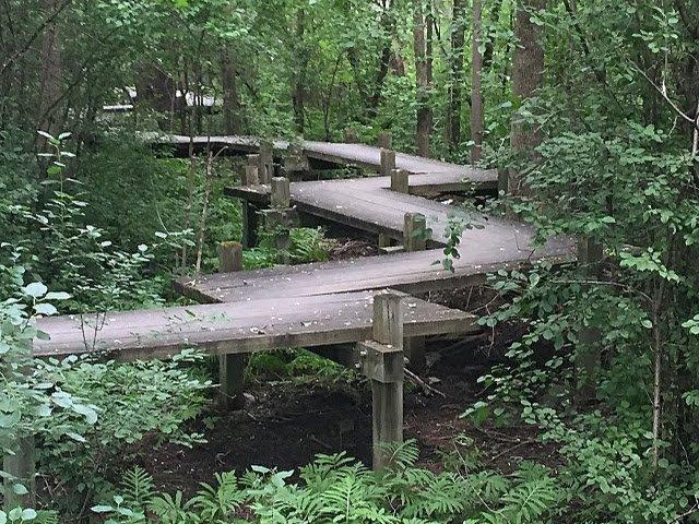 Parc Nature Du Bois De Liesse Montreal
