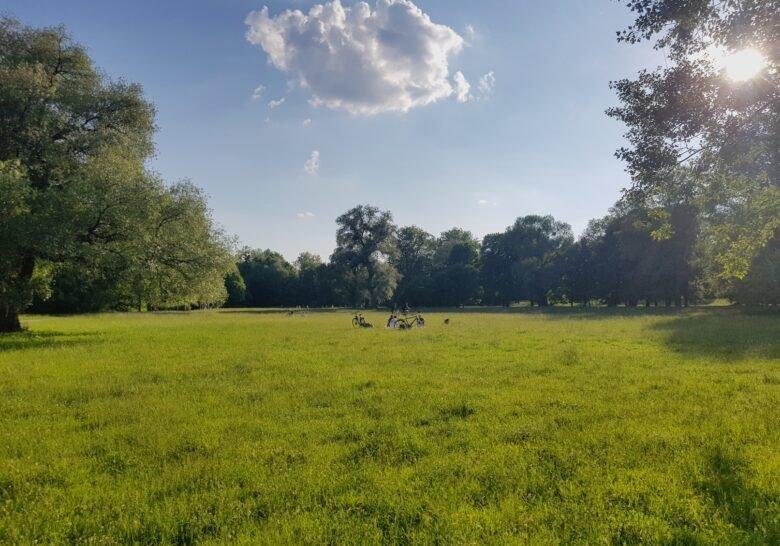 Englischer Garten Nord Munich