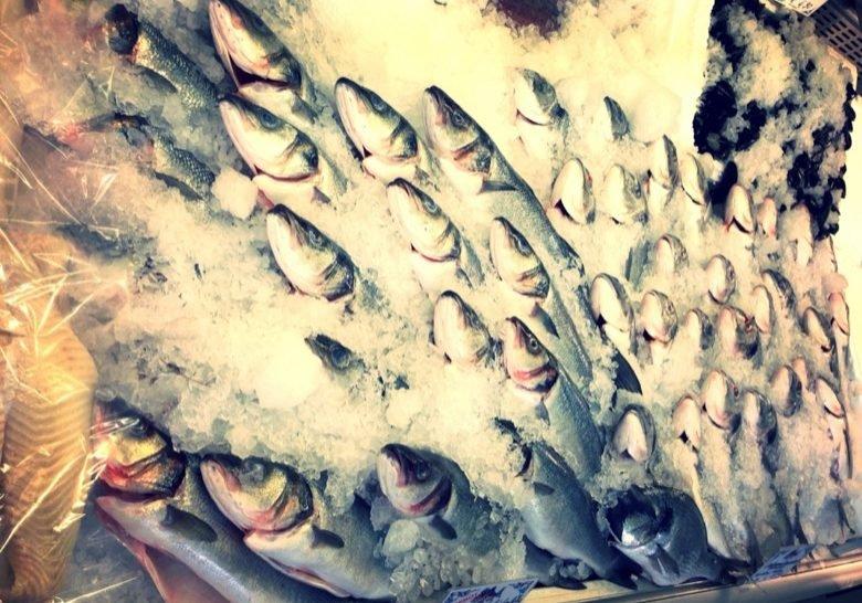Unser Fischmarkt Munich