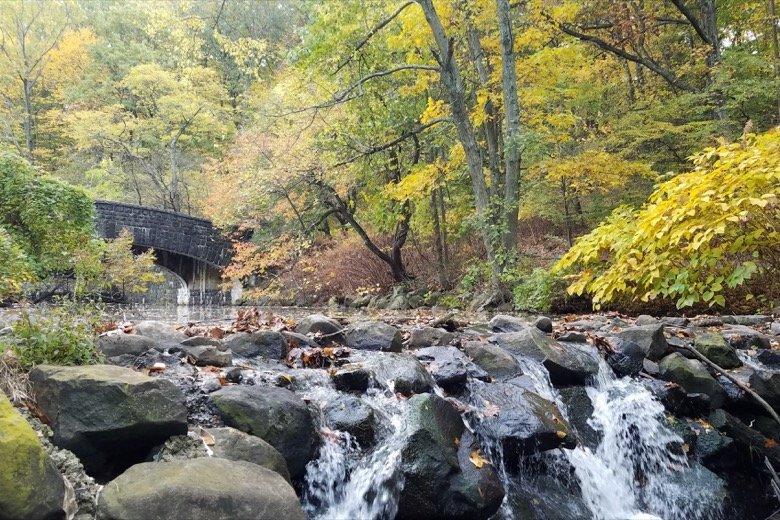 Clove Lakes Park New York