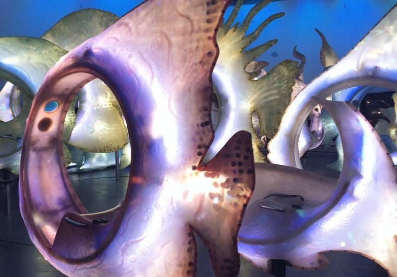SeaGlass Carousel New York