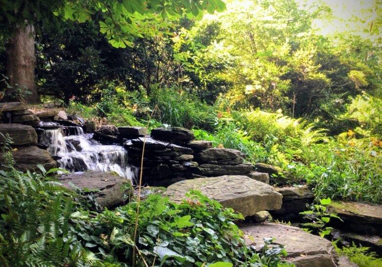 Bio Pond U. Penn Philadelphia