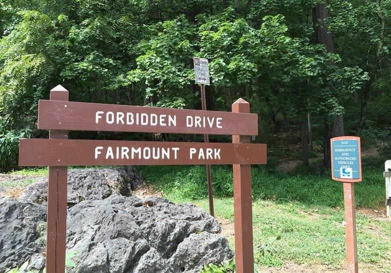 Forbidden Drive Philadelphia