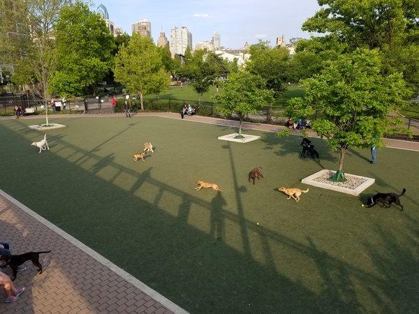 Schuylkill River Dog Park Philadelphia