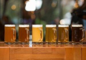 Akademija Piva – Craft beer