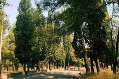 Gorica Hill Podgorica