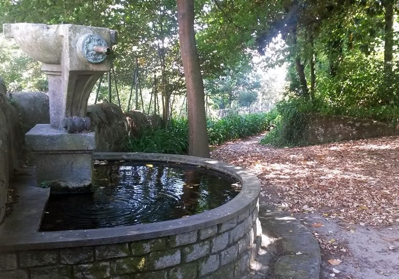 Nova Sintra Garden Porto