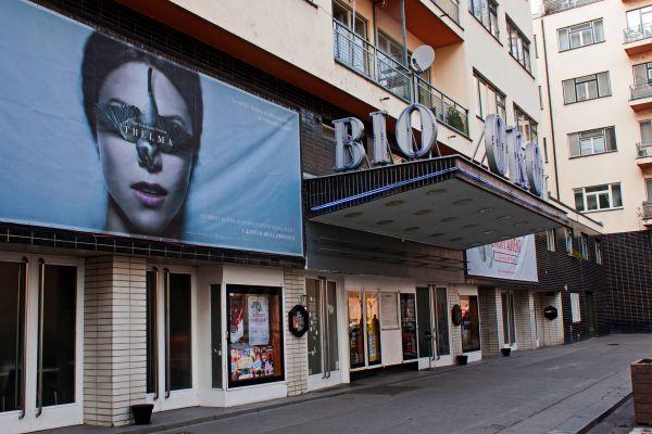 BIO|OKO – Alternative cinema