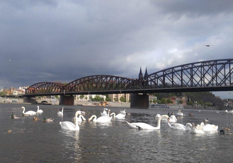 Železniční Most Prague
